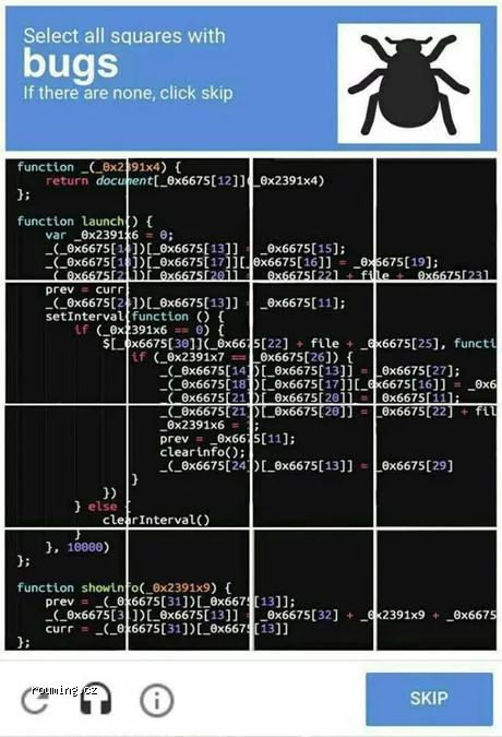 captcha_for_programmers.jpg